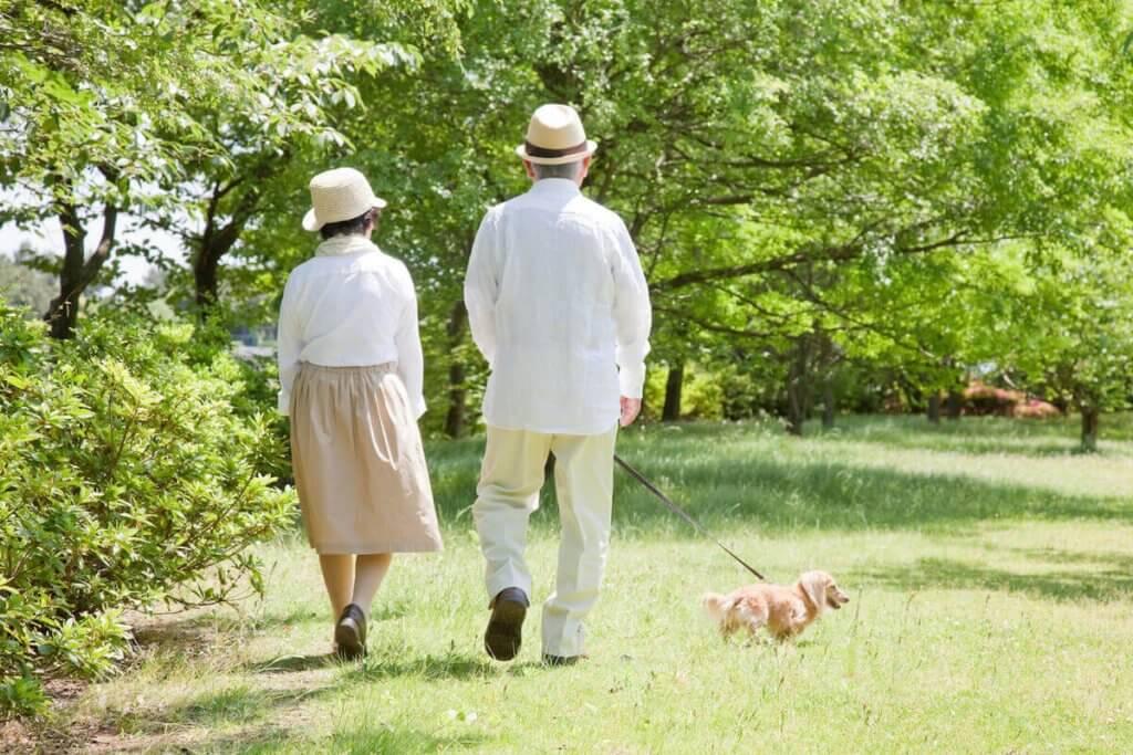 高齢者向け商品のヒットには市場と購買行動の把握が重要